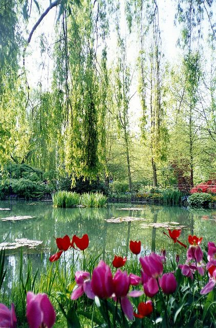 Giverny-japan-kert