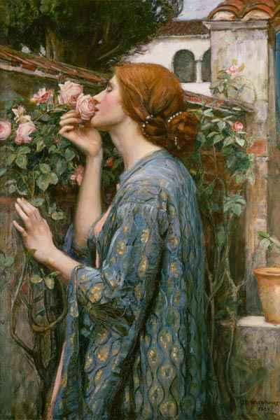 a rózsa lelke