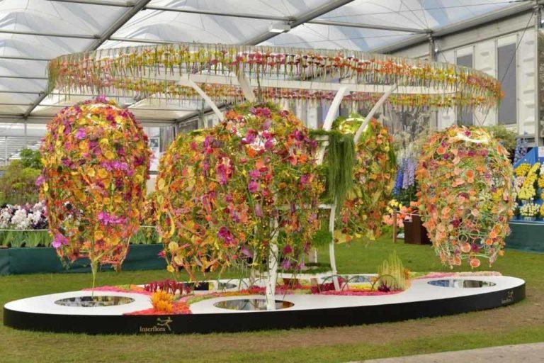 Interflora-Succession-Chelsea-Flower-Show-landscape-2