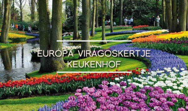europa viragos