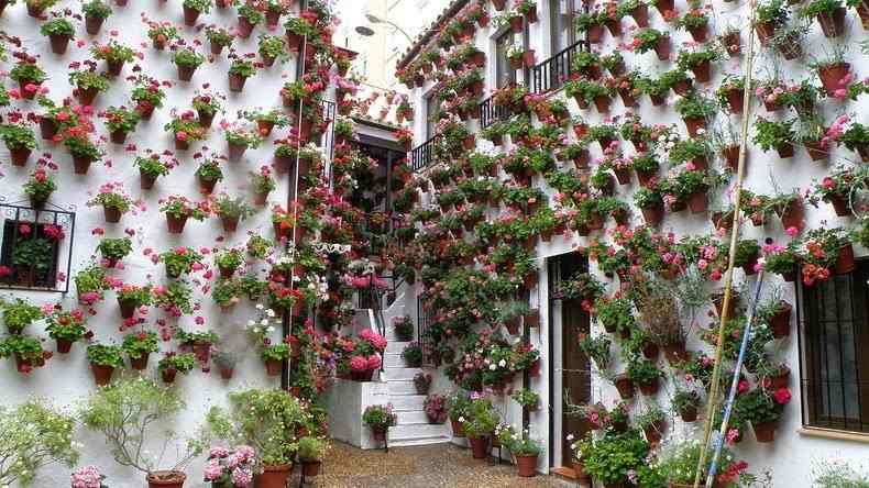 virágos patio fesztivál Córdoba