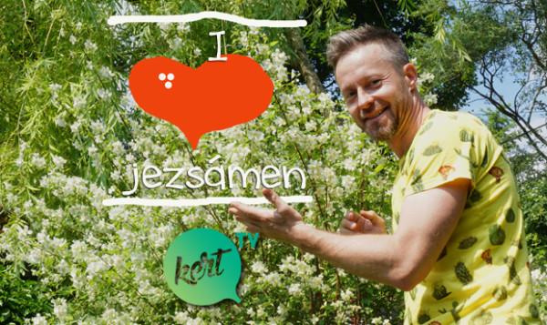 jezsámen