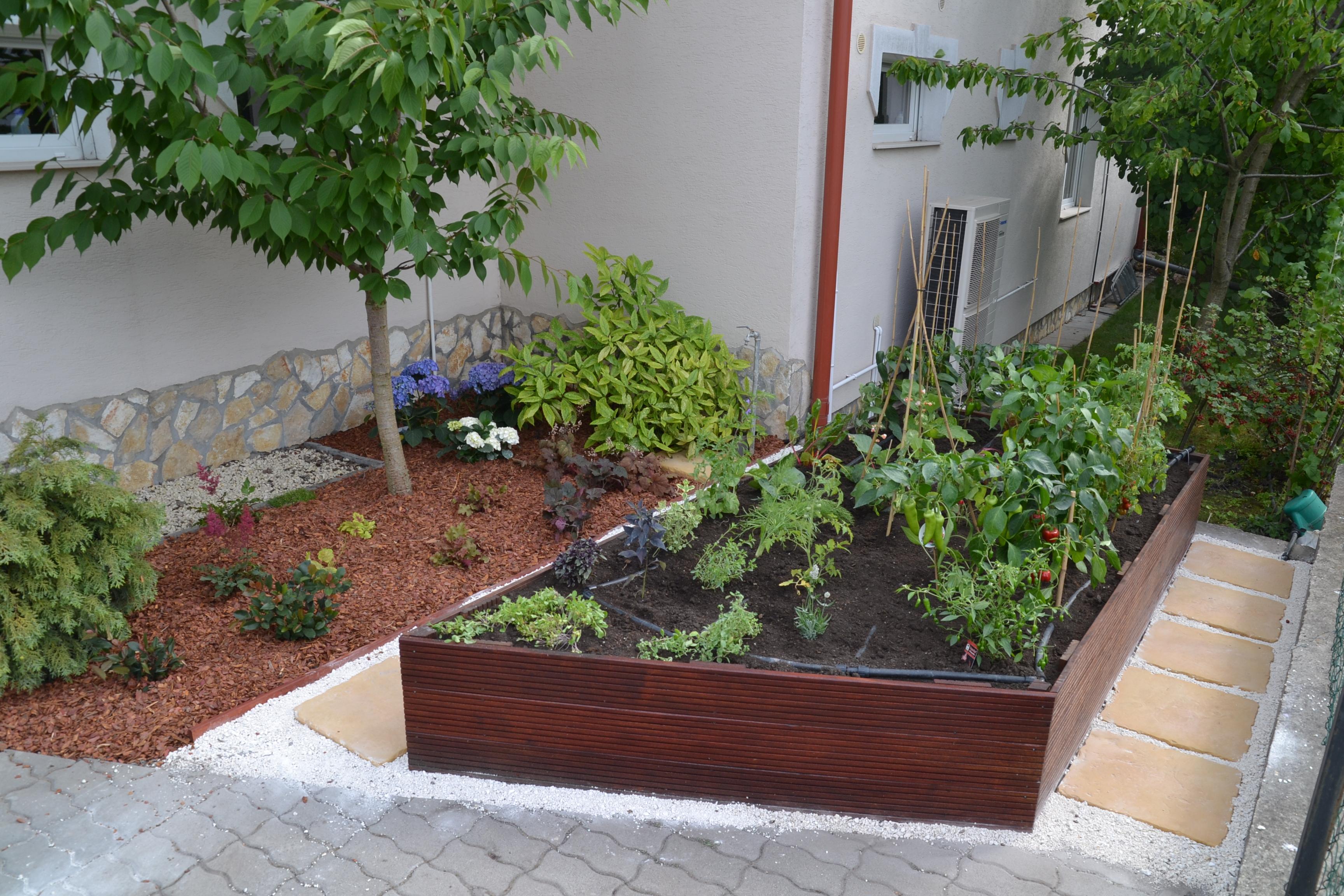 Konyhakert magaságyásban - Otthon a kertben