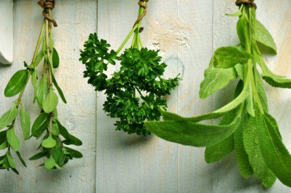 júliusi tennivaló a fűszernövények szárítása
