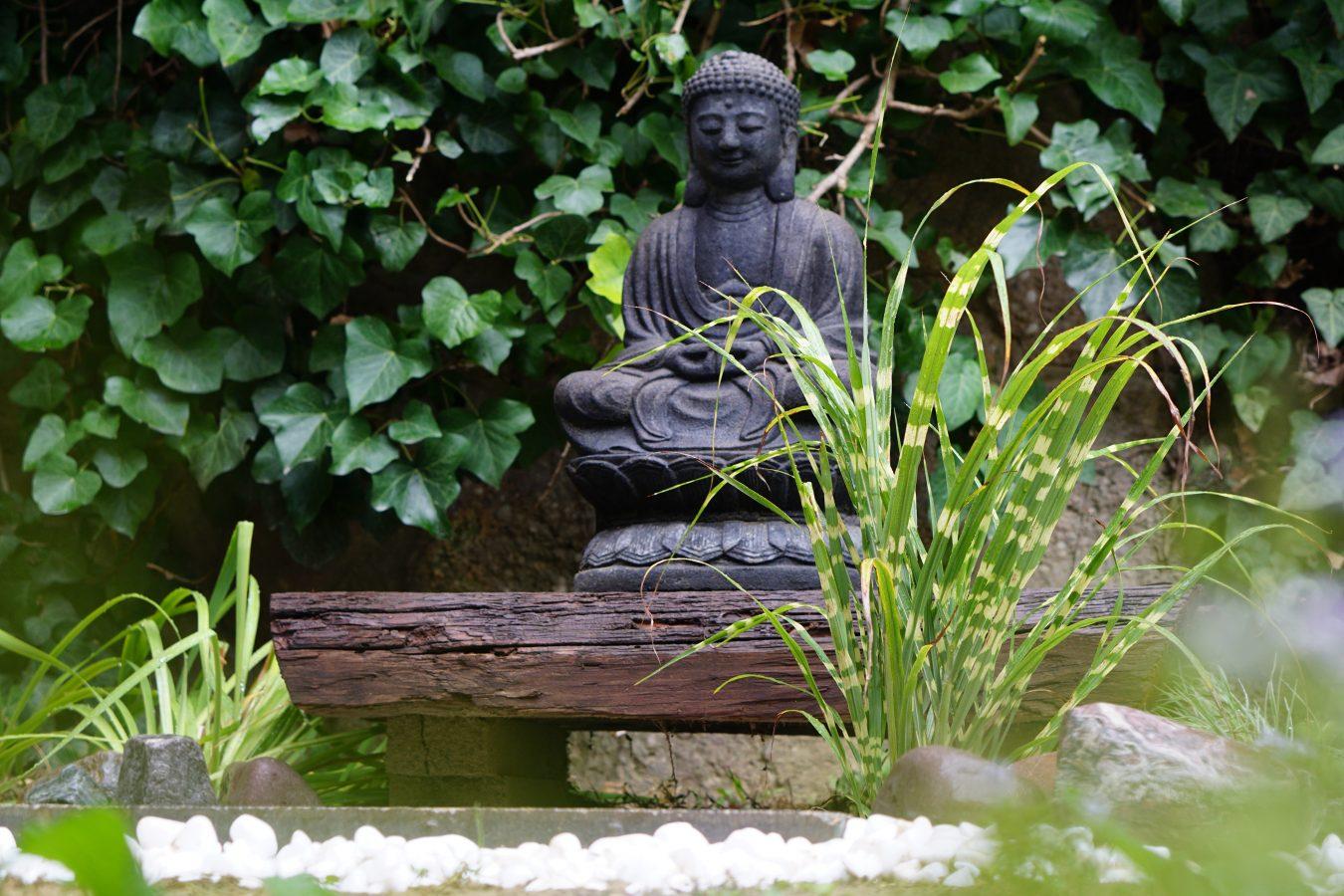 Otthon a kertben - egy mini kerti tó