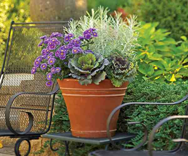 Fall-Containers_101094628_web