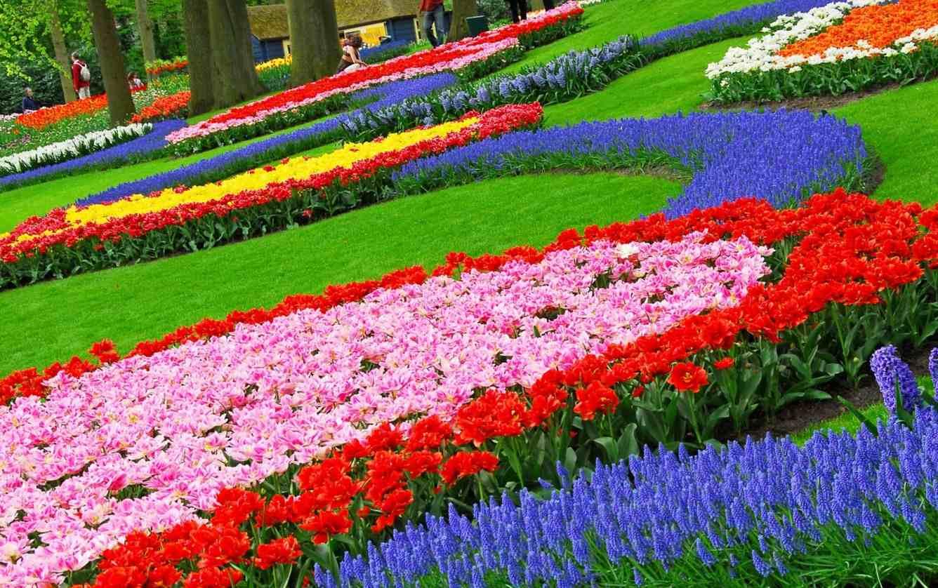 geometrikus virágágyás