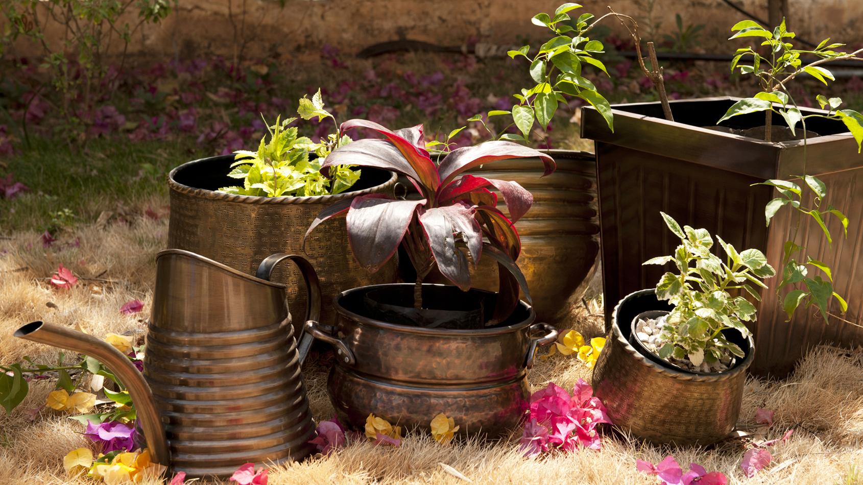 Meghökkentő kerti tárgyak a vintage jegyében