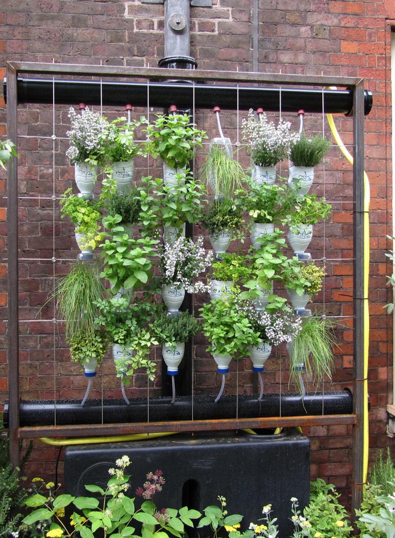 Házi növényfal-rendszer