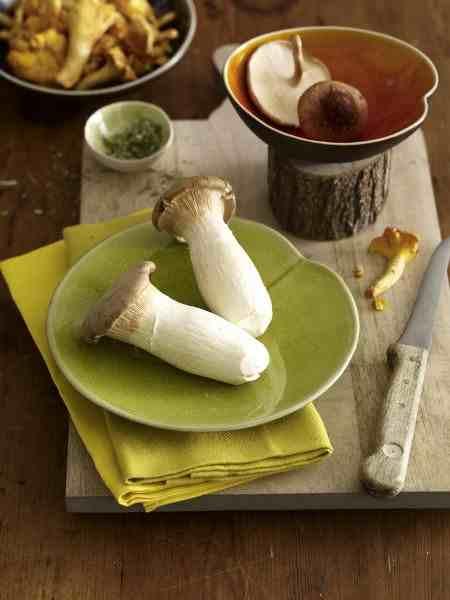 őszi asztaldeko gombából