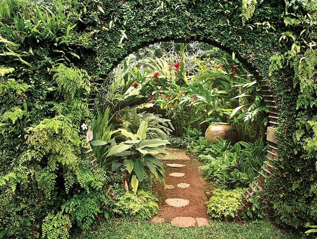 Trópusi kertek nyomában - Egy angolkert Srí Lankán