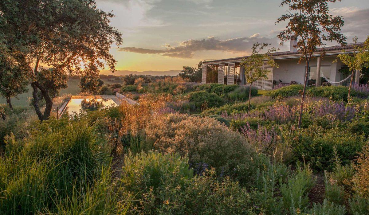 Szép kertek nyomában: dúsan burjánzó évelőkert a szikár Kasztíliából