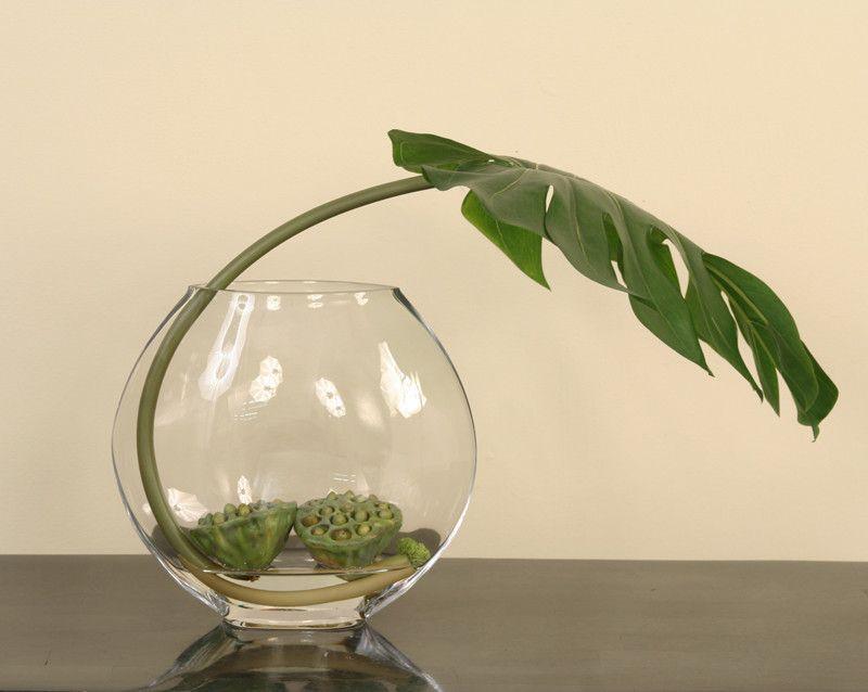 A feledékeny kertészek növénye: a filodendron