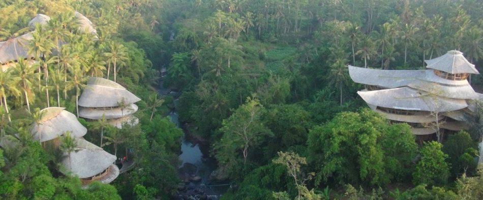 Bali, zöld, bambusz, falu