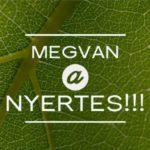 MEGVAN A NYERTES!