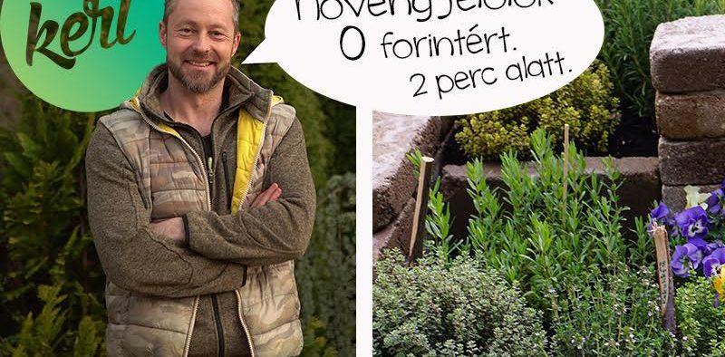 növényjelölő tábla, növény jelölő tábla