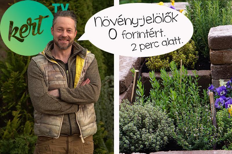 Növény jelölő táblák egyszerűen - videó