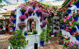 viragos-patio-andaluzia