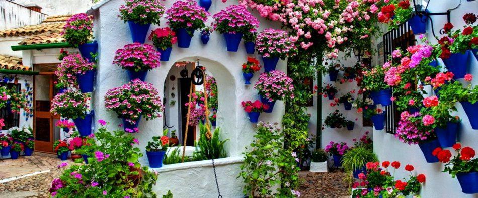 Andalúzia, Córdoba, patio, virágos udvar