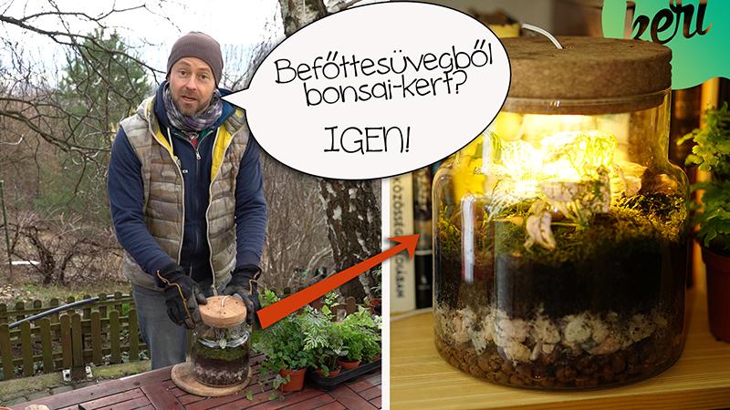 Így készíts csodásan egyszerű floráriumot! - videó Márkkal