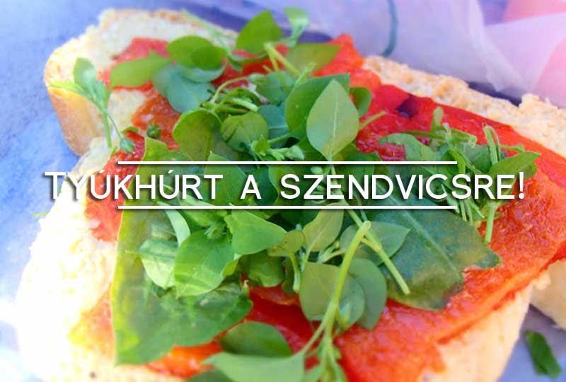 tyúkhúr saláta