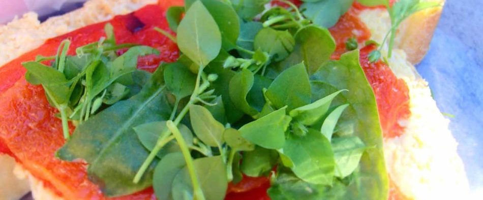 tyúkhúr-salata-gyogynoveny