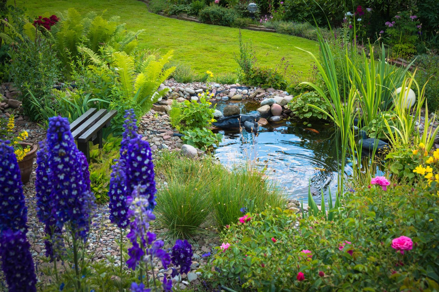 Így tartsd tisztán a nyár közepén kerti tavacskádat!