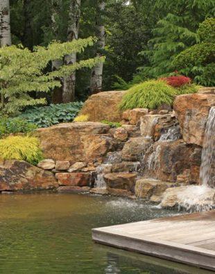 víz-a-kertben