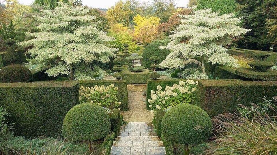francia kert-castillon
