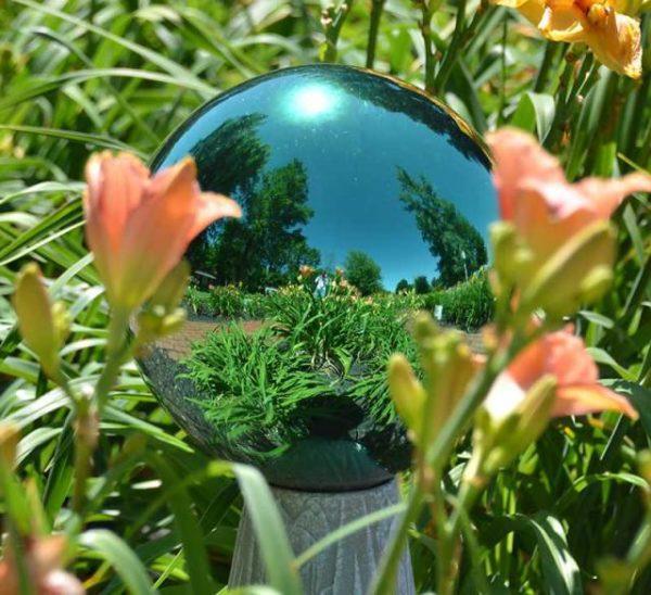 tükör a kertben
