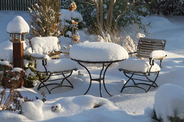 Január a kertben - mert egy kertgazda a fagyban sem tétlen!