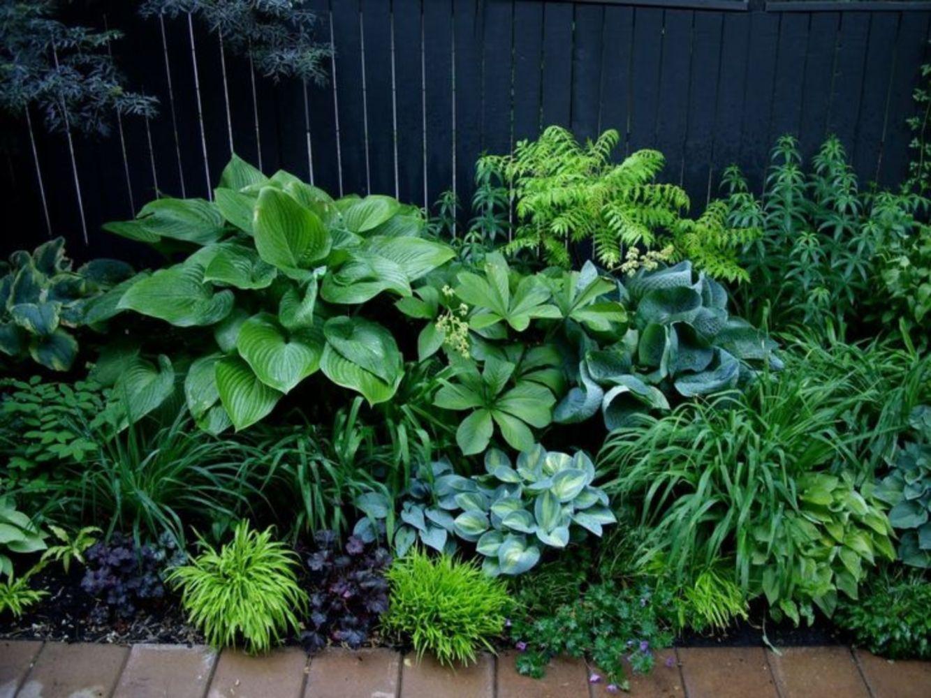 Árnyékban is lehet csodás kertet varázsolni!