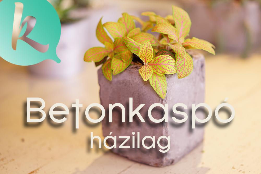 Így készíts minimalista beton kaspót! - diy videó Márkkal