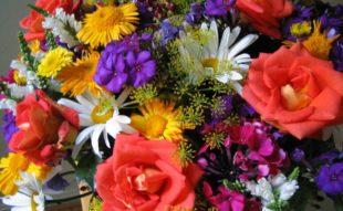 házi készítésű táp vágott virághoz