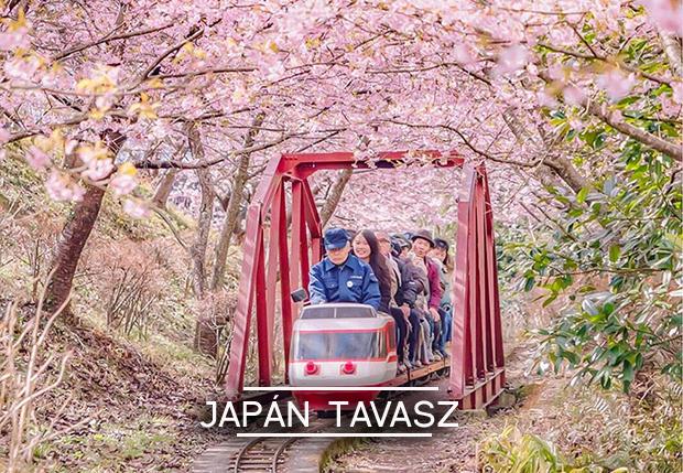 japan-tavasz