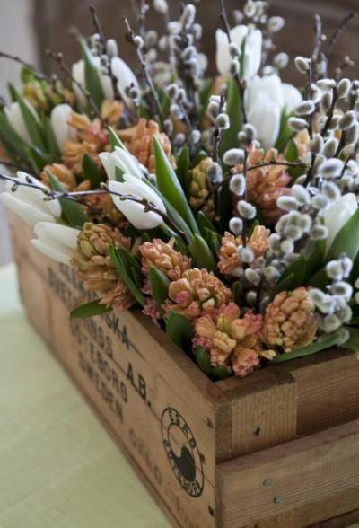tavaszi-hagymas-viraglada
