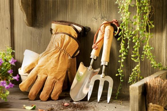 kert, szerszám, tisztítás