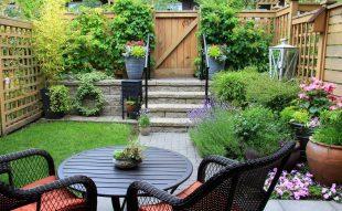 balkon, balkonnövény, konténeres kertészkedés