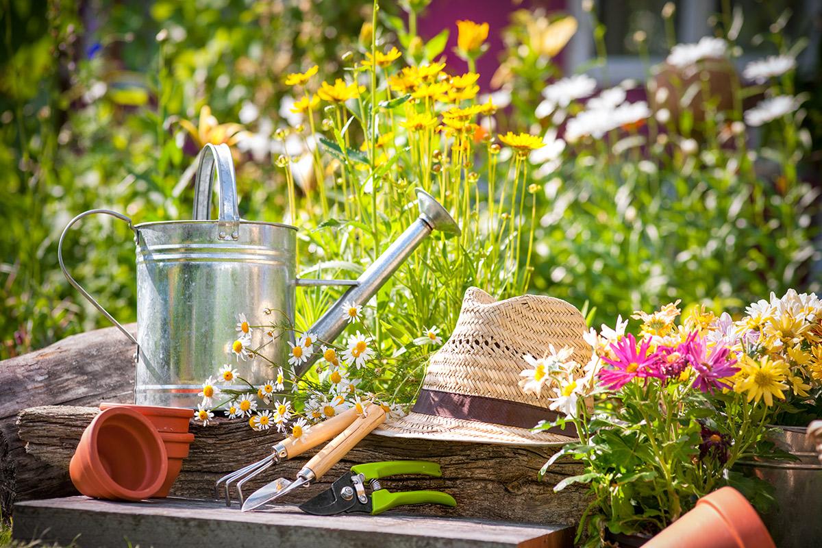 Júniusi munkák a kertekben