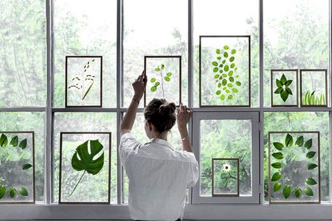 Az új trend: préselt növények képkeretben