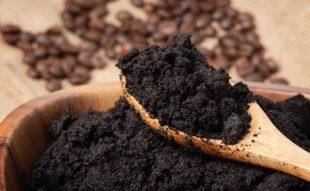 kávézacc, praktika, kert