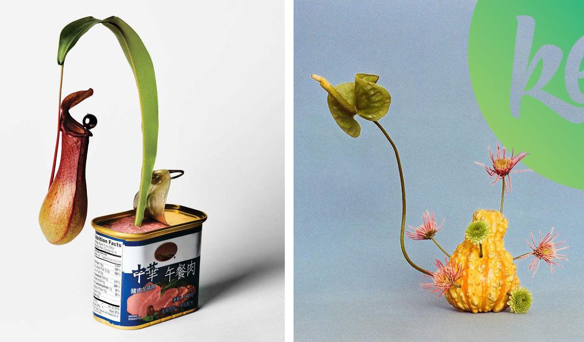 """Fedezd fel a  """"FREAKEBANA""""-t, a legfrissebb nagyon bizarr virágkötészeti trendet!"""