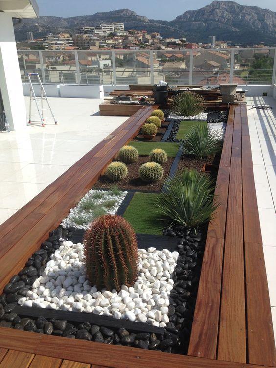 modern kaktuszkert a balkonon