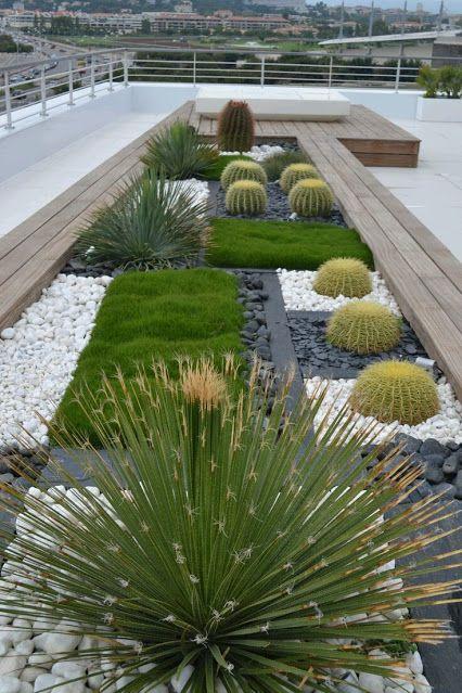 modern-kaktuszkert