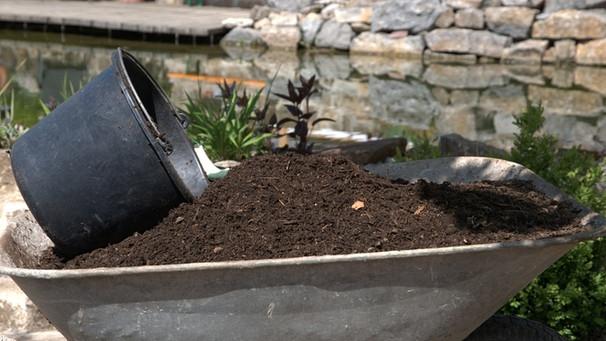 talaj-javitas-termeszetes-modon