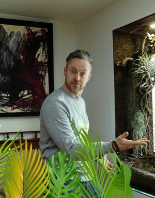 plantárium, dzsungel, lakás, otthon