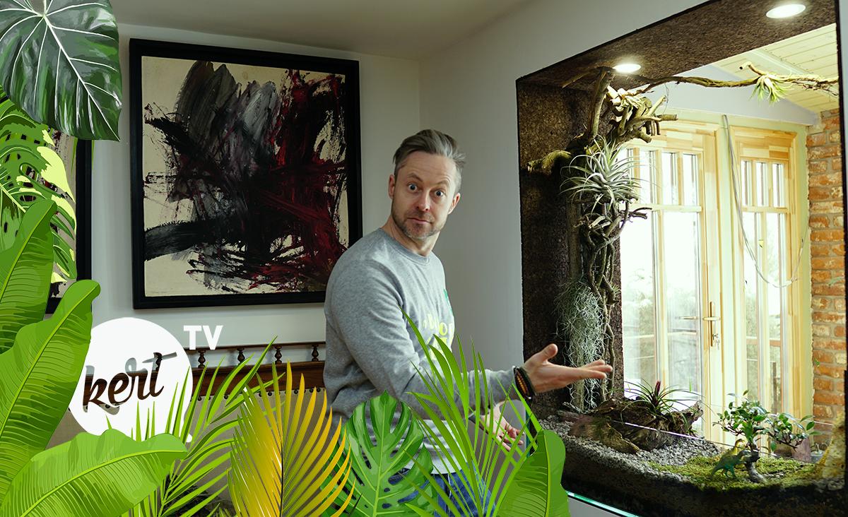 Így készíts gyönyörű floráriumot! - Minikertészkedés a lakásban