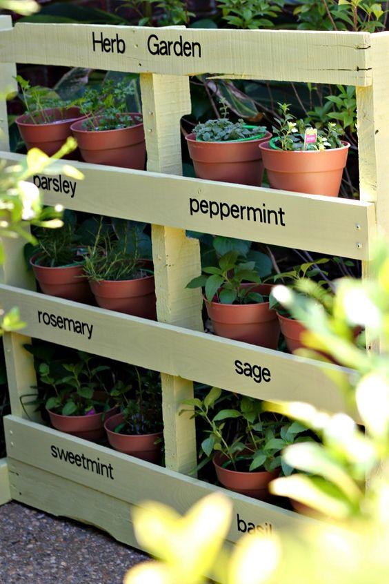 fűszernövénykert raklapban