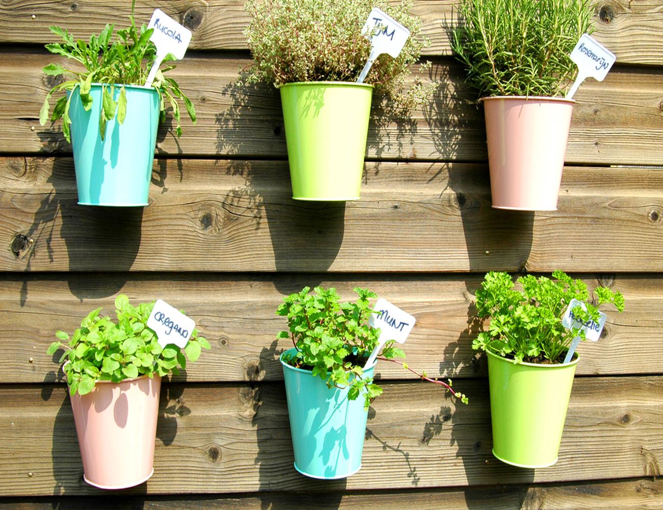 10 mutatós, könnyen elkészíthető függő fűszernövénykert