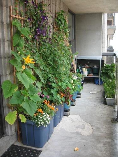 fuggoleges-kert-balkonon
